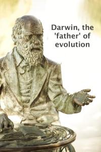 Darwin, 'Why six days?