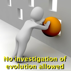 No investigation of evolution