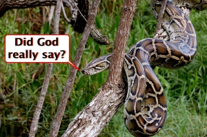 Talking serpent