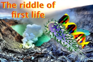 The riddle of first life
