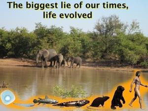 Life evolved, the lie