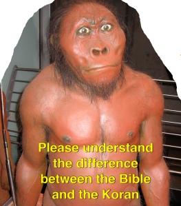 Bible Koran difference