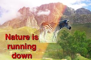 Nature running down
