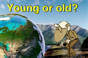 Young or old?