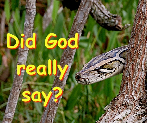 Know once and for all that the talking serpent in Genesis 3 was real.